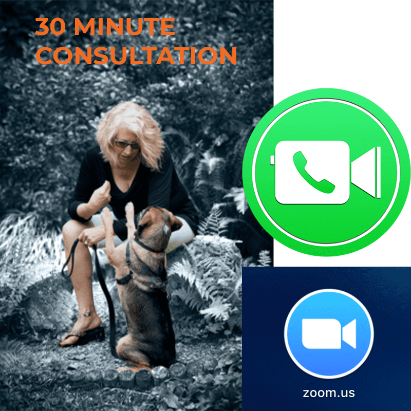 Pay for 30 minute consultation