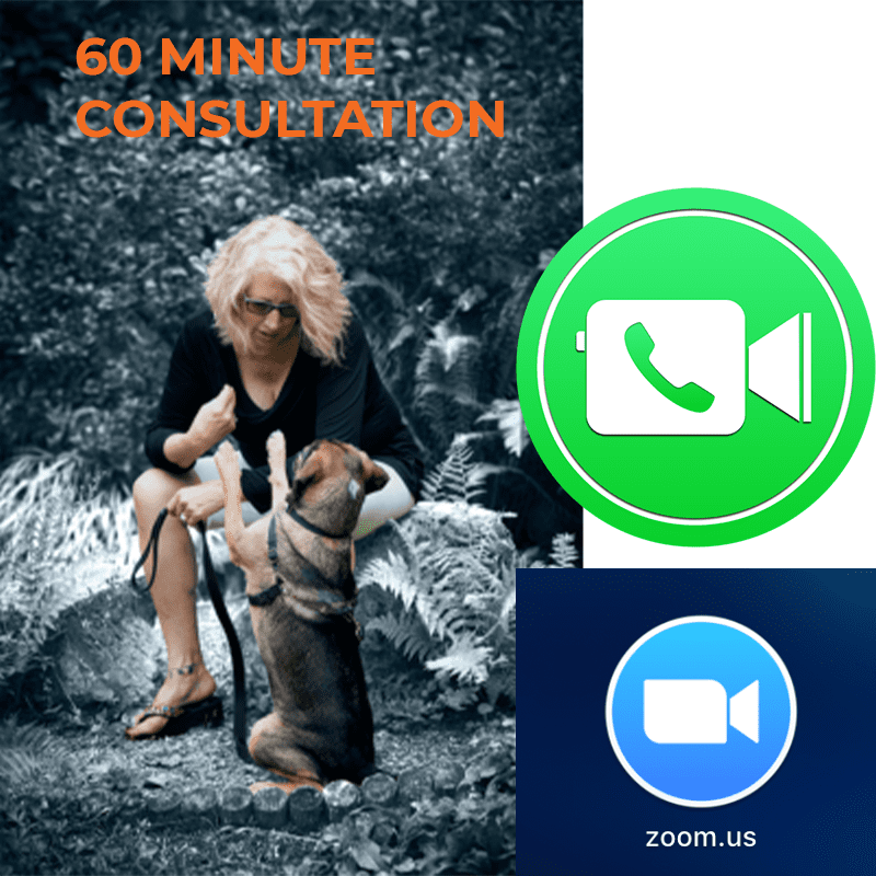 Pay for 60 minute consultation