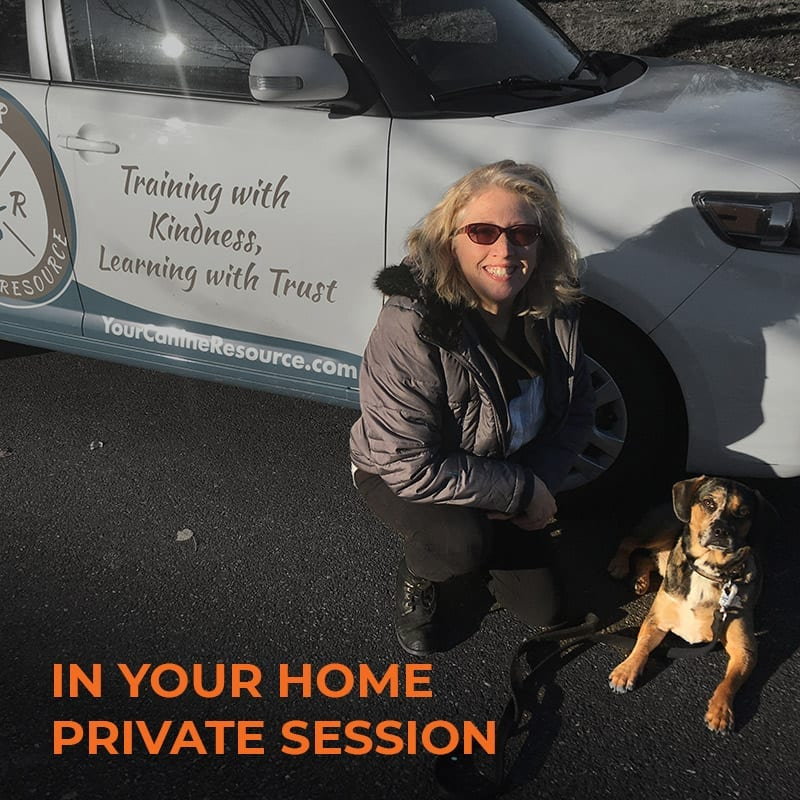 Sign up and pay for private training in your home!