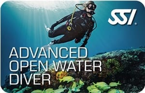 Take your scuba skills to the next level.