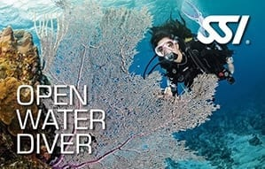 Get scuba certified and start your dive adventures today!