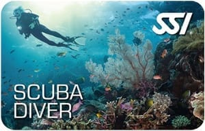 Get a taste of diving with the Scuba Diver program