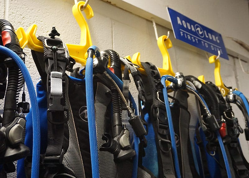 We rent BCDs, scuba regulators, tanks, wetsuits