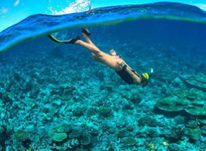Taste the freedom of free diving