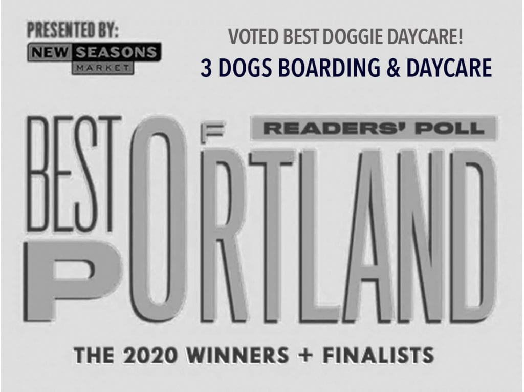 Voted Willamette Week's 2020 Portland's Best Doggie Daycare